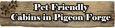 Pet Friendly Cabins in Pigeon Forge