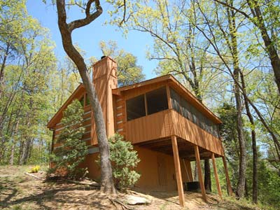 A secluded bearadise 1br cabin pet friendly cabins in for Luxury pet friendly cabins pigeon forge