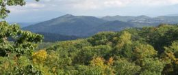 A Heavenly View – 1BR Pet Friendly Cabin